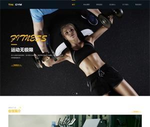 健身行业网站建设_W13502