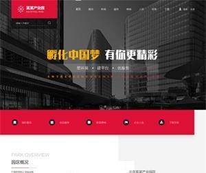 财税服务网站建设_W15001